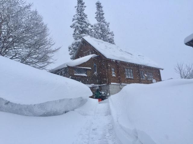 家の除雪完了