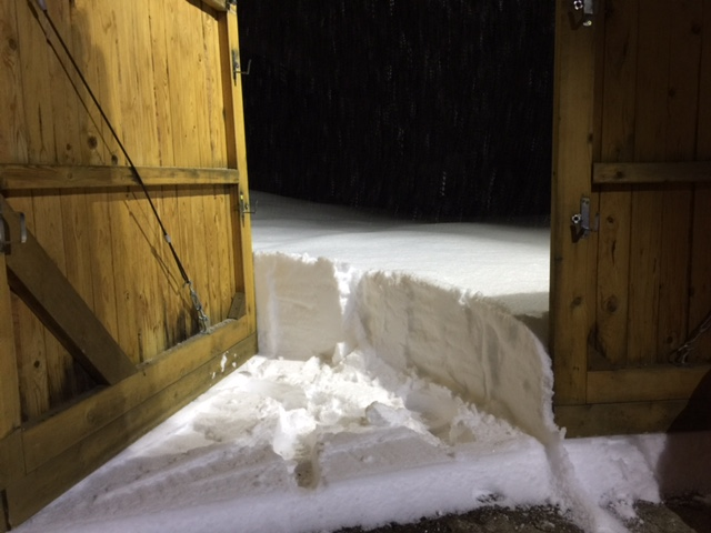 豪雪地帯の雪